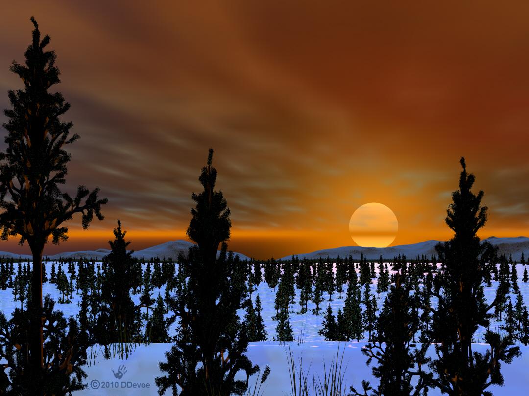 taiga | Cold Lands Artist