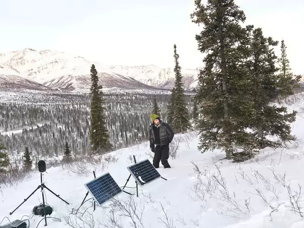 Davyd Betchkal, sound catcher, in Denali National Park and Preserve in Alaska.