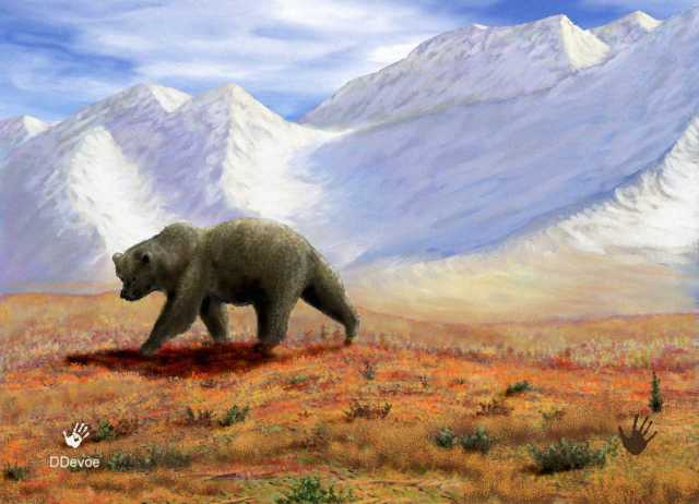 Bear and Mountain