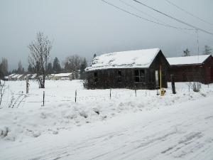 ramshackle cabin in sandpoint, id