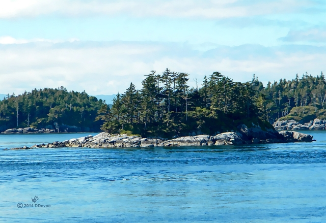 salish island