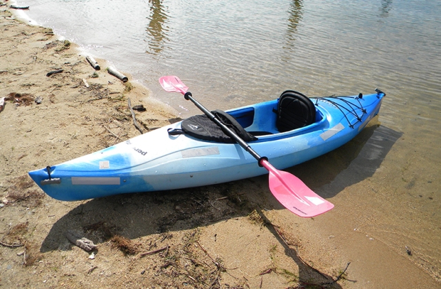 my blue kayak dubbed the cyanotic salmon