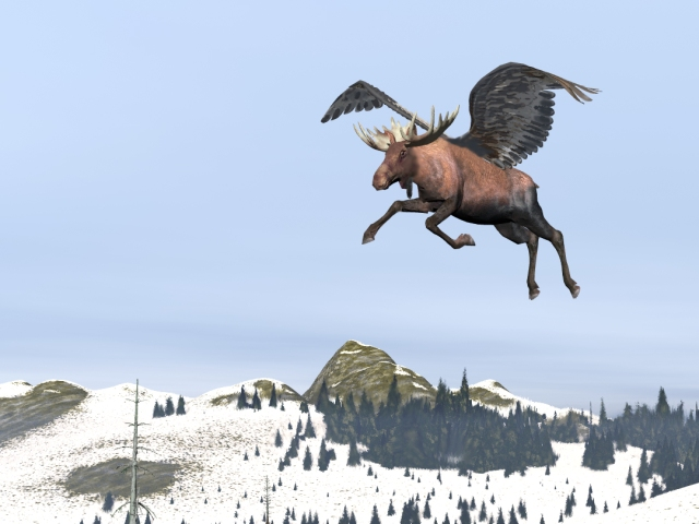 flying moose - alces volanti